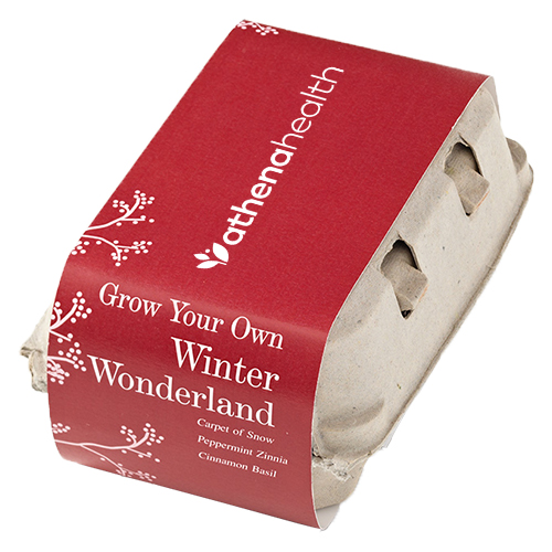 Winter Wonderland Grow-Your-Own Kit