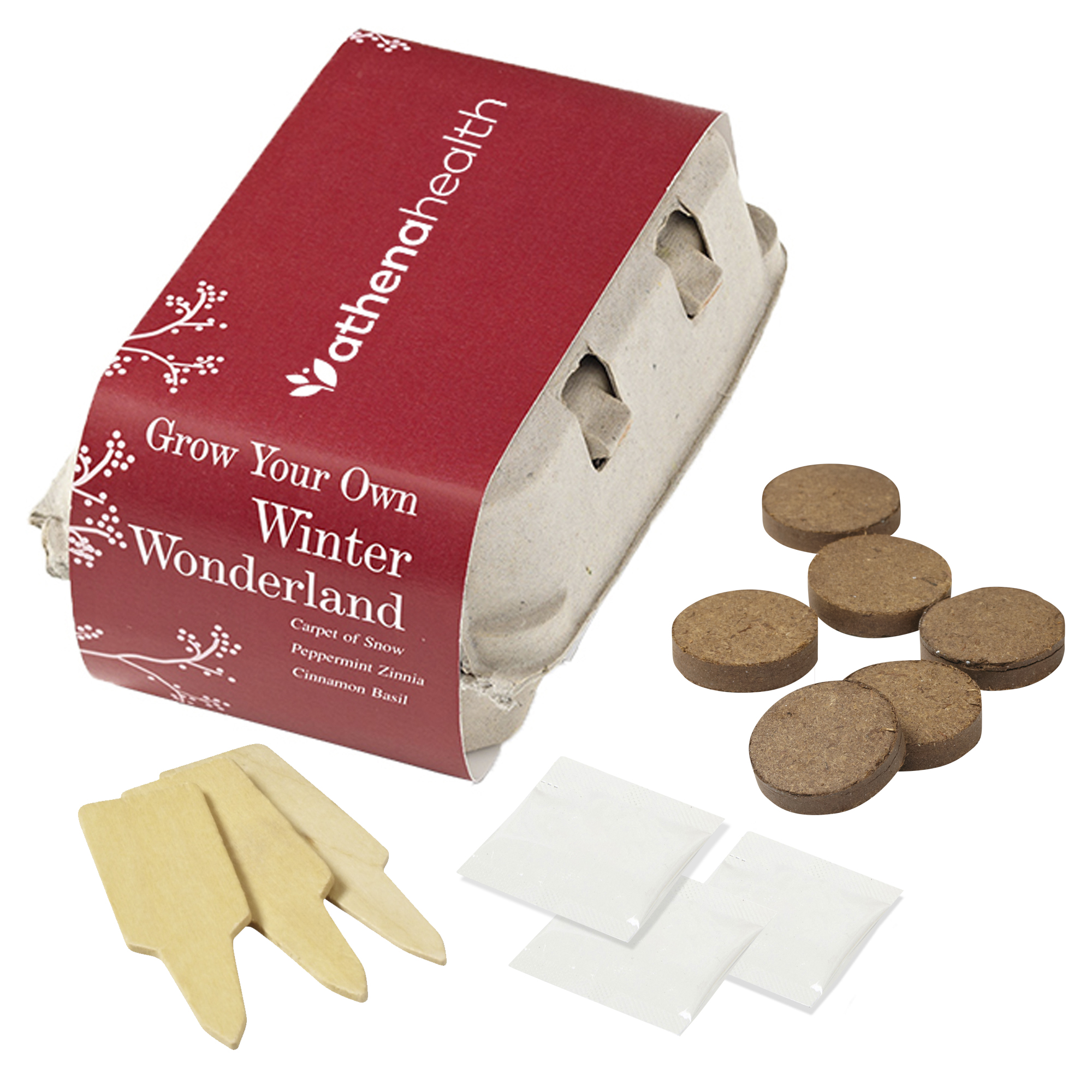 Winter Wonderland Grow Your Own Kit